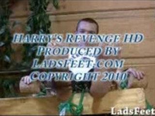 Harrys Revenge HD