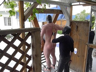 slave Forced to Do Pullups